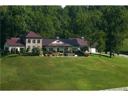 805 New Herman Rd Shelbyville, TN MLS# 1676304
