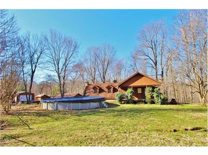 1051 Pumpkin Ave Charlotte, TN MLS# 1685393