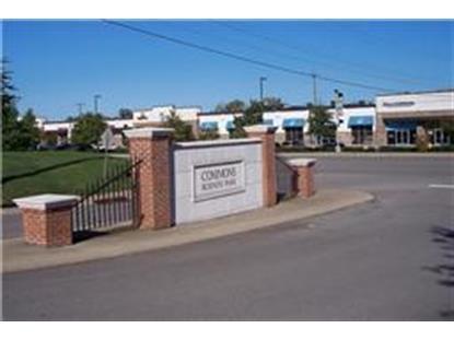 Real Estate for Sale, ListingId: 36773739, Gallatin,TN37066