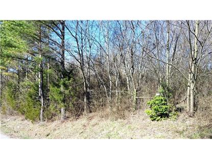 134 Beechwood Ave Cornersville, TN MLS# 1702731