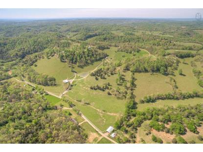 1425 Bartlett Hollow Road Petersburg, TN MLS# 1731531