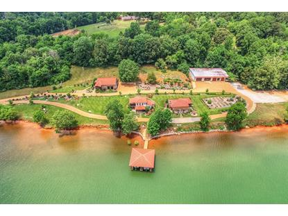 2745 New Lake Rd Spring City, TN MLS# 1740107