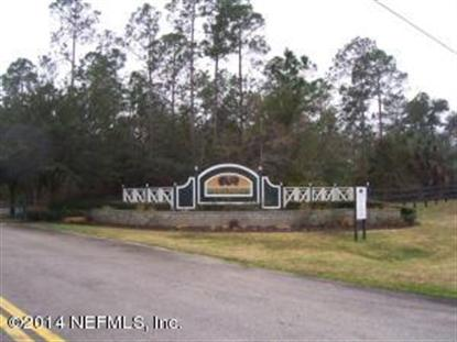 100 DANCING HORSE DR Hastings, FL MLS# 701463