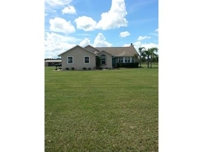 135 Persimmon  Interlachen, FL MLS# 736112