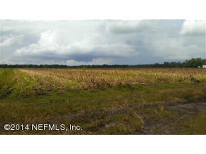 0 REGISTER BURRELL RD Hastings, FL MLS# 738986