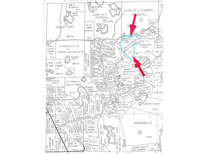 Lot 94 Waters Pond Road  Bronson, FL MLS# 755596