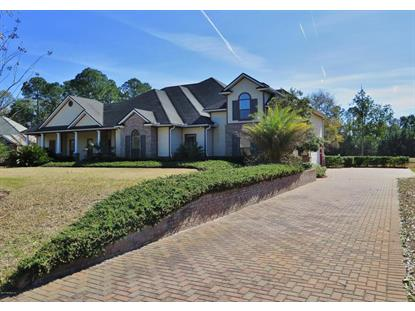 96082 SCARLET OAKS CT Yulee, FL MLS# 756315