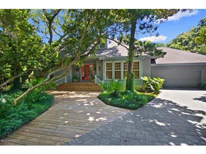 10 BUCKTHORNE DR Amelia Island, FL MLS# 756607