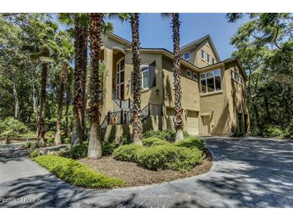 23 BEACH WALKER RD Amelia Island, FL MLS# 771223