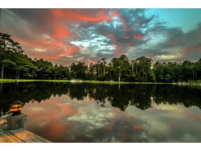 16190 BUTCH BAINE-230 ACRES  Jacksonville, FL MLS# 800530