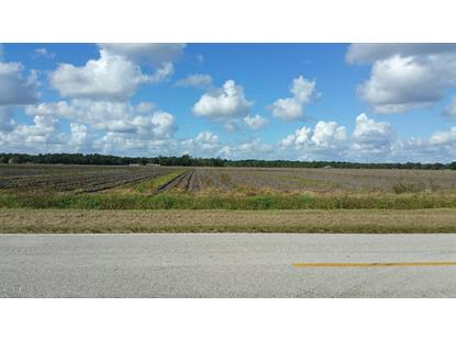 8501 HASTINGS BLVD Hastings, FL MLS# 804054