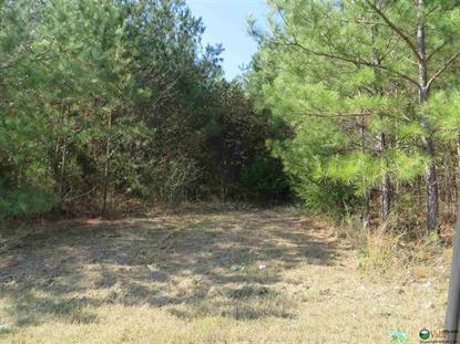 NAT KEY ROAD Falkville, AL MLS# 1006917