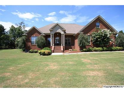 1349 MOUNT ZION ROAD Falkville, AL MLS# 1024778