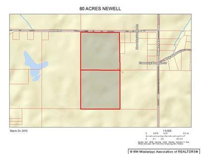 80 NEWELL ROAD  Hernando, MS MLS# 302442