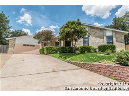 12807 PARK FOREST ST  San Antonio, TX MLS# 1013085