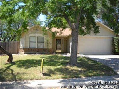 5363 CHESTNUT VIEW DR  San Antonio, TX MLS# 1049782