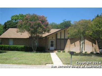 13203 PARK MANOR ST  San Antonio, TX MLS# 1068145