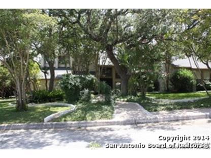 314 BLUFFCREST  San Antonio, TX MLS# 1068289