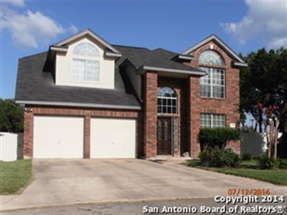 7302 ROCKY CEDAR  San Antonio, TX MLS# 1068426