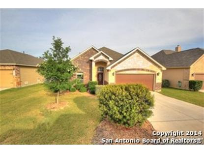 21619 SEMINOLE OAKS  San Antonio, TX MLS# 1068681