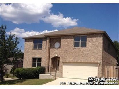 16938 UNION CAVERN  San Antonio, TX MLS# 1073750