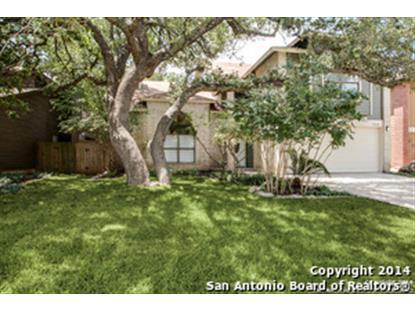 15230 Moonlit Grove  San Antonio, TX MLS# 1073967