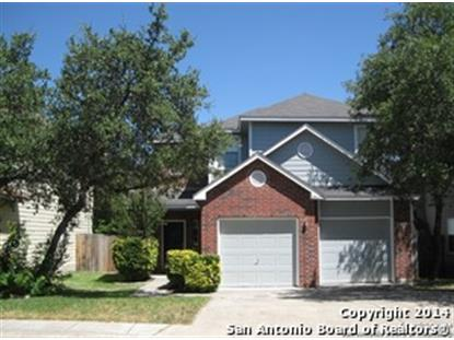 20622 Tree Meadow  San Antonio, TX MLS# 1075363