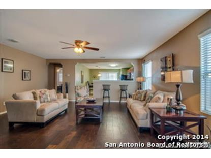 25339 Colt River  San Antonio, TX MLS# 1079334