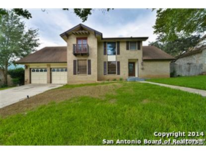 2922 LOW OAK ST  San Antonio, TX MLS# 1079417