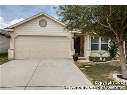 111 VENEZIA  San Antonio, TX MLS# 1079475