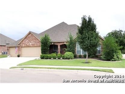 802 STEUBING OAKS  San Antonio, TX MLS# 1079532