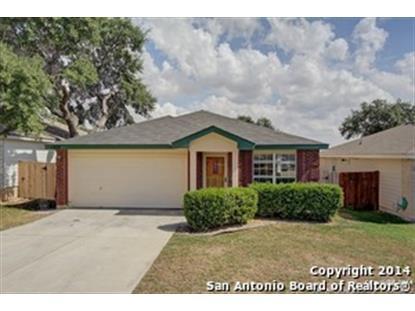 1222 COUGAR COUNTRY  San Antonio, TX MLS# 1080384