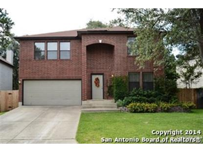 15919 WATERING POINT DR  San Antonio, TX MLS# 1080429