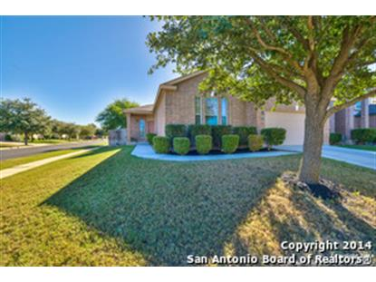 17138 DARLINGTON RUN  San Antonio, TX MLS# 1082115