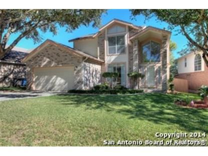 13719 CHITTIM WOODS  San Antonio, TX MLS# 1083647