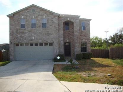10006 DEL LAGO CT  San Antonio, TX MLS# 1085256