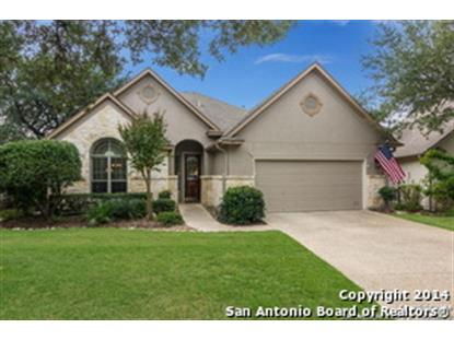 99 GRASSMARKET  San Antonio, TX MLS# 1087964