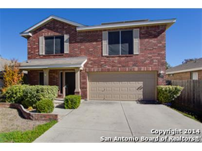 9610 SHETLAND CT  San Antonio, TX MLS# 1088934