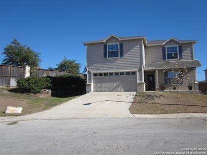 3534 Ironwood Falls  San Antonio, TX MLS# 1094912