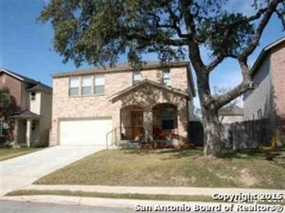 10539 manor creek  San Antonio, TX MLS# 1099035