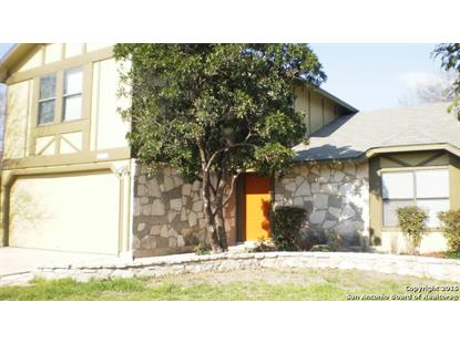 3307 TREE GROVE DR  San Antonio, TX MLS# 1099219