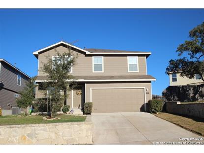 118 Osprey Haven  San Antonio, TX MLS# 1102655