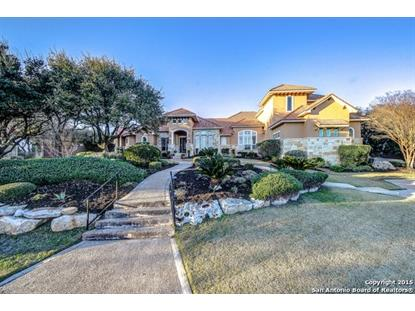 91 Champion Cliff  San Antonio, TX MLS# 1102683