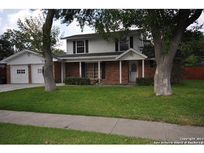 3107 SATELLITE DR  San Antonio, TX MLS# 1115678