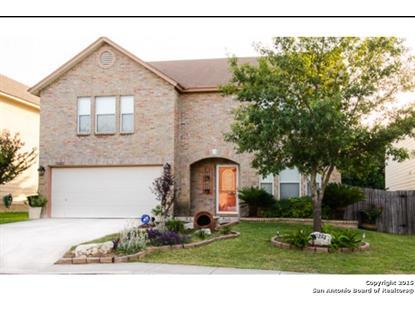 10222 Rainbow Creek  San Antonio, TX MLS# 1123883