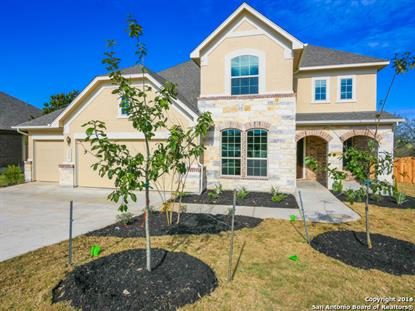 29047 GOOSEBERRY  San Antonio, TX MLS# 1145412