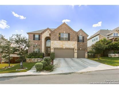 3834 OX-EYE DAISY  San Antonio, TX MLS# 1148326
