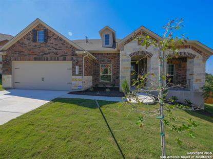 28907 GOOSEBERRY  San Antonio, TX MLS# 1149789