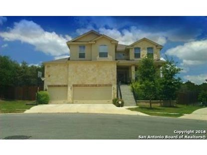10114 Shetland View  San Antonio, TX MLS# 1172837