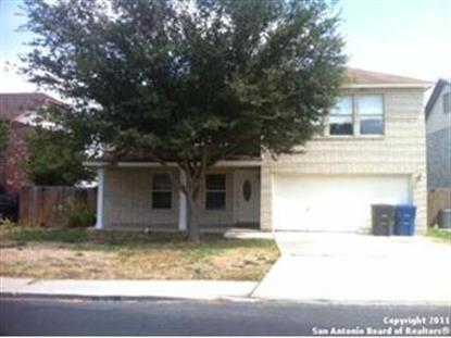 10107 Cedarvale Dr , San Antonio, TX